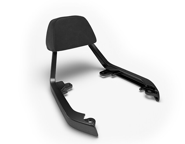 Passenger Backrest Kit